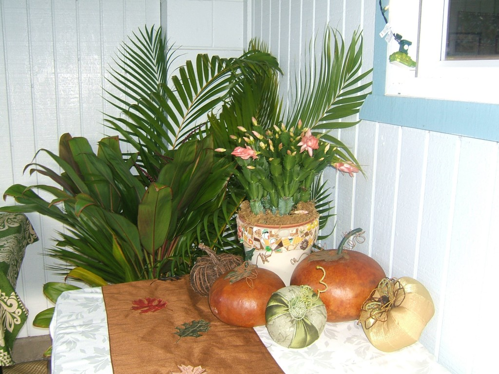 Tropical Thanksgiving Decor